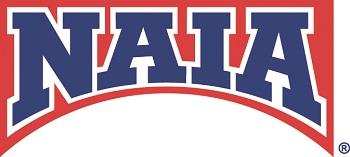 NAIA Bridge Logo