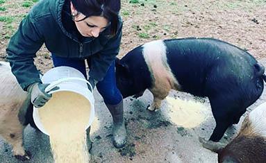 Lori Simmons at C of O  Hog Farm