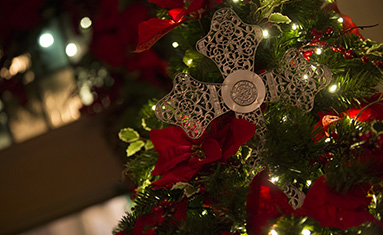 College of the Ozarks Christmas Events