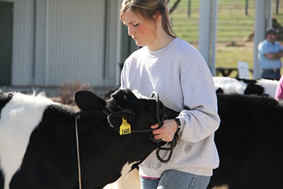 volunteer helps with the 2016 FFA Workshop