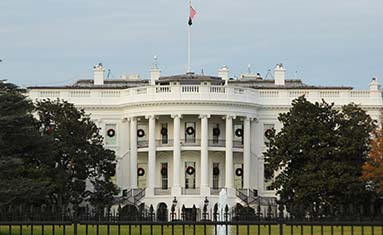 C of O White House Intern