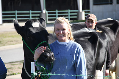 student dairy worker and herdsman Haley Hines shows one of the Holsteins