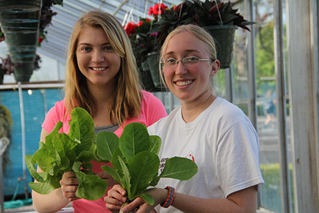 Students with Hydroponic Lettuce