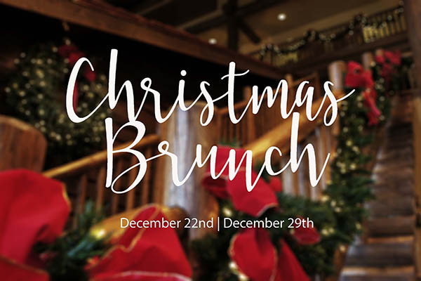 Beautiful Christmas Background with Brunch logo